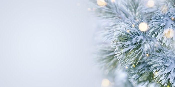 sophisticated Christmas styling blog header