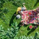 The best picnic spots in Kent